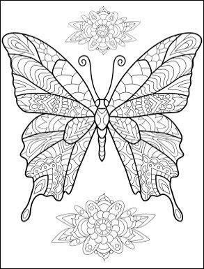 world_butterflies13