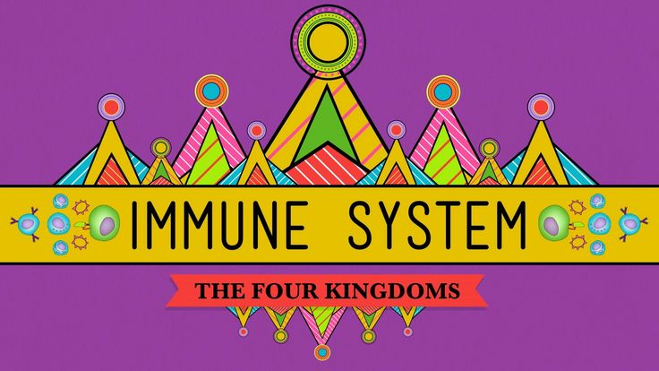 Your Immune System: Natural Born Killer - Biology #32