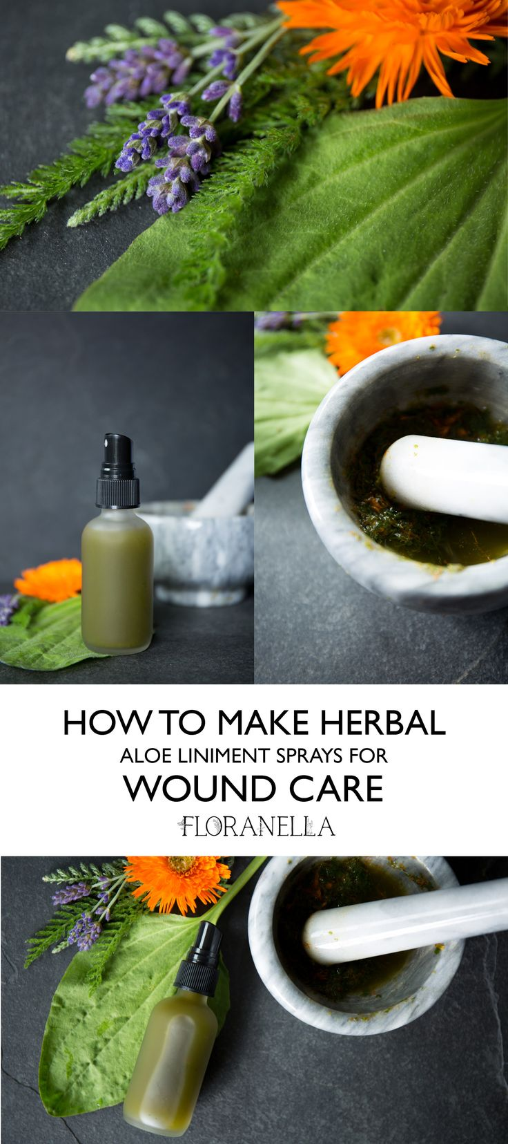 How to Make an Herbal Aloe Liniment Spray for Wound Care – Herbal First Aid