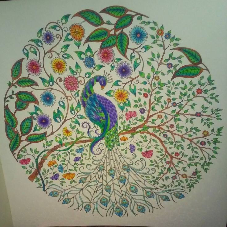 """Mr Peacock is done finally :) #peacock #colouring #johannabasford #secretgarden"""
