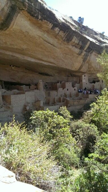 Cliff place in Mesa verde Colorado pic this place was amazing