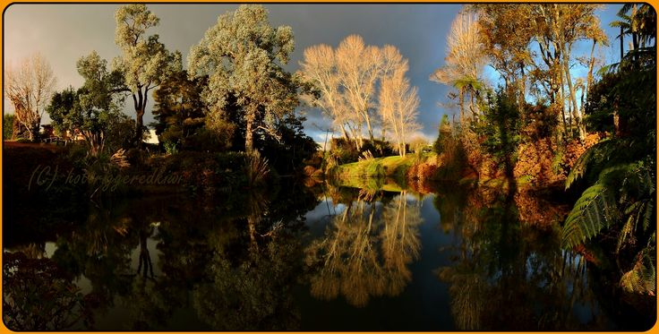 Hotriggeredkiwi: Day's dawning http://www.arthritis.org.nz/hotriggeredkiwi-days-dawning/Another?utm_campaign=coschedule&utm_source=pinterest&utm_medium=Arthritis&utm_content=Hotriggeredkiwi%3A%20Day%27s%20dawning long week at work with 50-plus hours on the clock... again, the extrication of self out of an extremely warm, soft and cosy bed on this cold autumnal morning is a toughie. I have to …