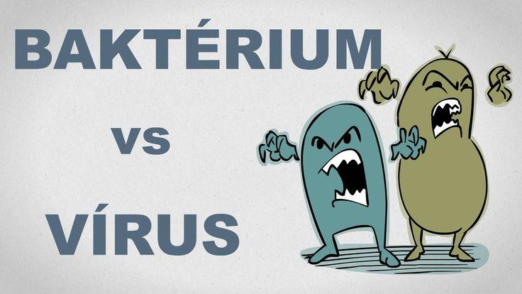 Vírus és baktérium: Mi a különbség, és kit érdekel egyáltalán? - csak eg...
