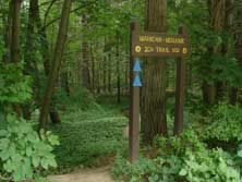 to Mohawk Trail State Forest---MASS  walk on pathths where Indians walked, following the course of the river through the steep wooded valley.  Picnic area, camping, river pool for swimming.  Hikers paths on Mt. Todd.  http://www.mass.gov/eea/agencies/dcr/massparks/region-west/mohawk-trail-state-forest.html
