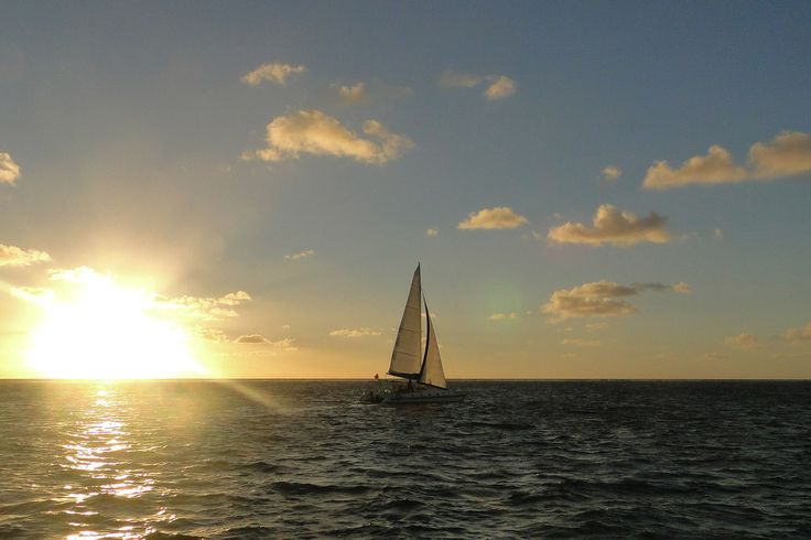 Island dreaming in Mauritius - by Tamlin Wightman