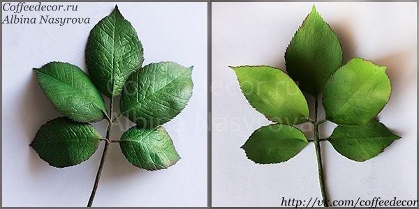 тонируем листья из фоамирана