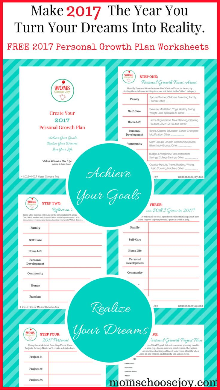2017 personal growth plan free goal setting worksheets for Setting life goals template