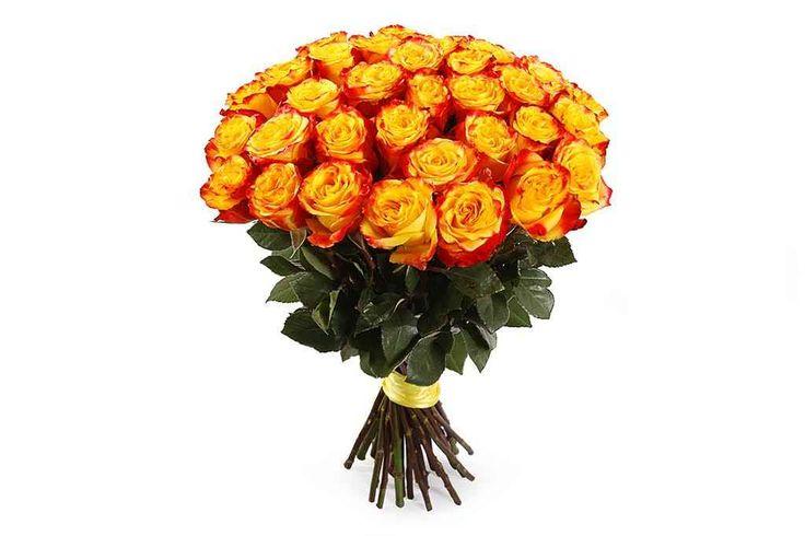 прекрасный Букет 35 роз Хай Еллоу  #Букеты #Оригинальныебукеты,Букет35розХайЕллоу