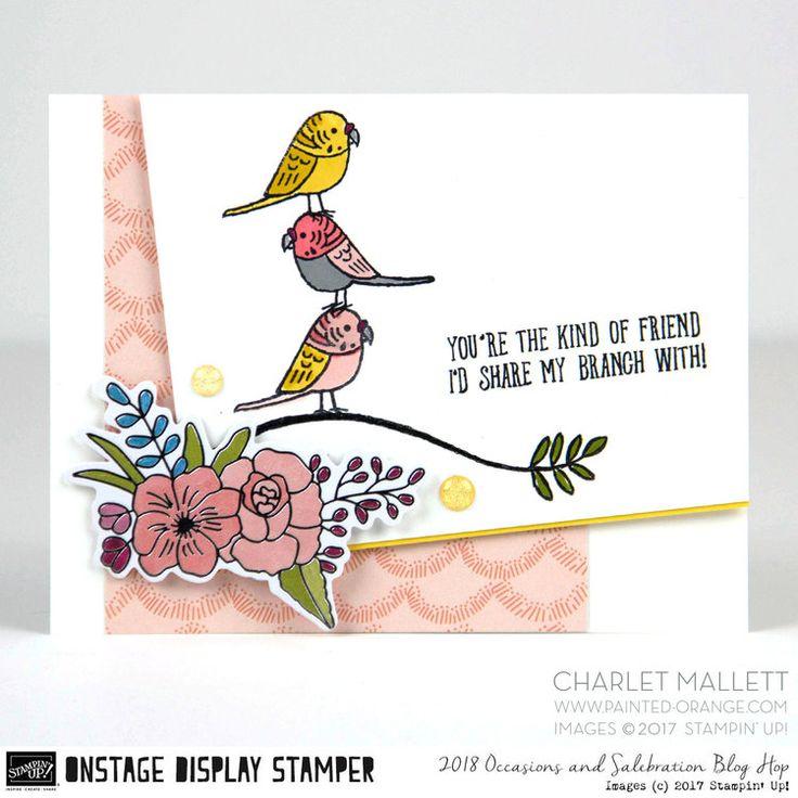Bird Banter OSDS4.jpg