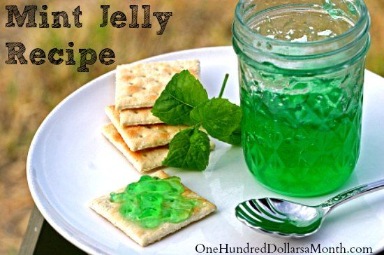 mint jelly recipe -  1-1/2 cups packed fresh mint leaves 2 tbsp. lemon juice 2-1/4 cups water 1 drop green food color {optional} 3-1/2 cups sugar 1/2 container liquid pectin