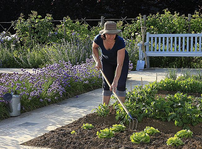Comment Refaire Son Jardin Comment Refaire Une Belle Pelouse Comment