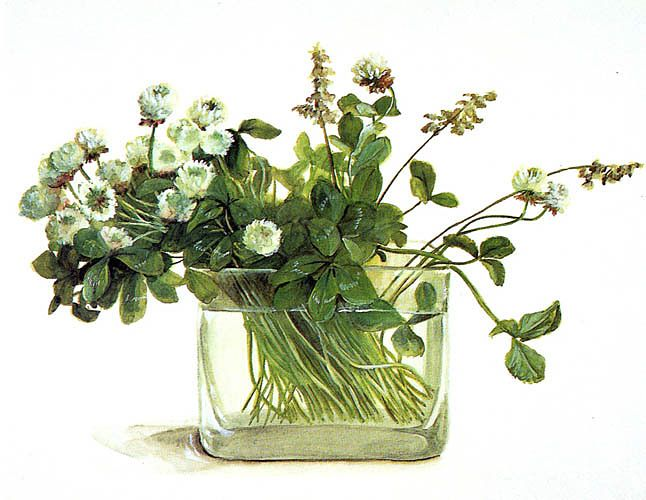 Фуджико Хашимото .Картины Хашимото имеют свой неповторимый стиль, в котором всегда присутствуют стеклянная ваза, вода и растения или веточки. Именно поэтому готовые наборы для вышивания произведенные компанией Lecien такие нежные, свежие и в тоже время очень простые.