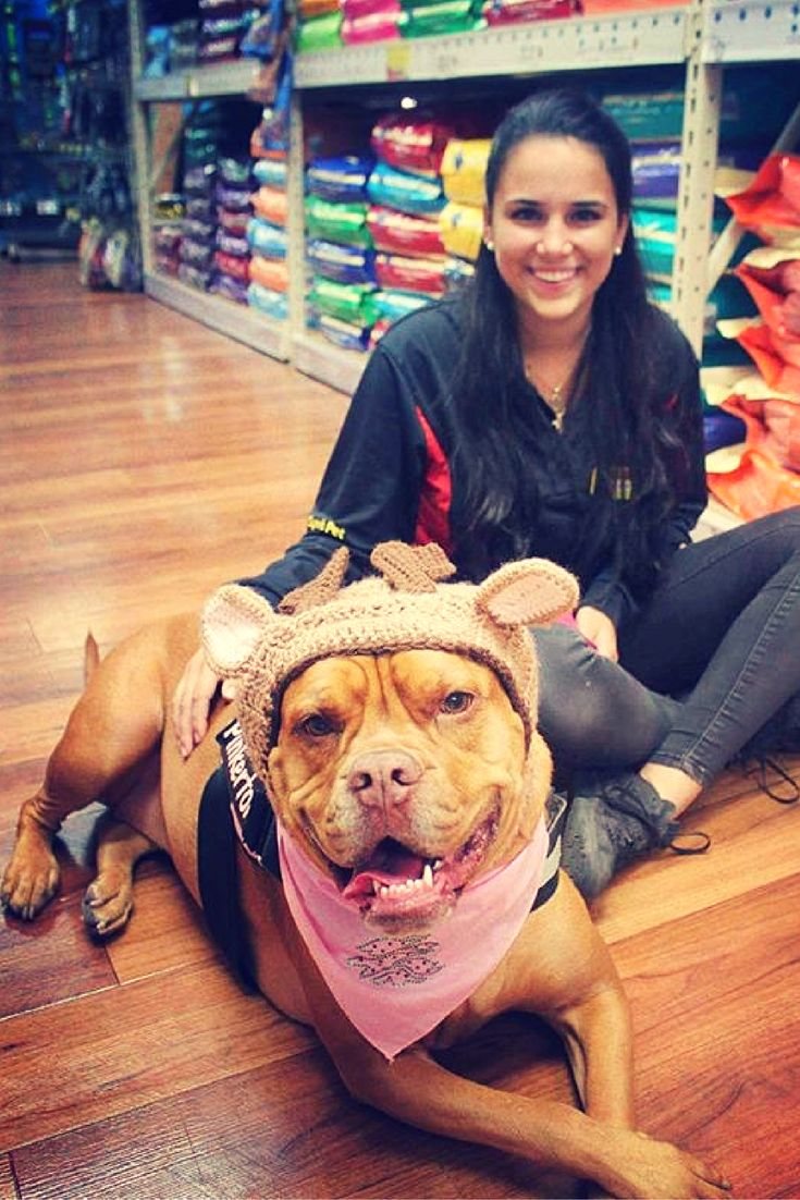 '@Mollymaepinkerton loves to visit often. Does your pup love to visit Pet Supermarket?  We hope so.