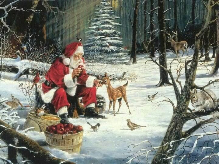 57 best The Magic of Christmas images on Pinterest Christmas decor