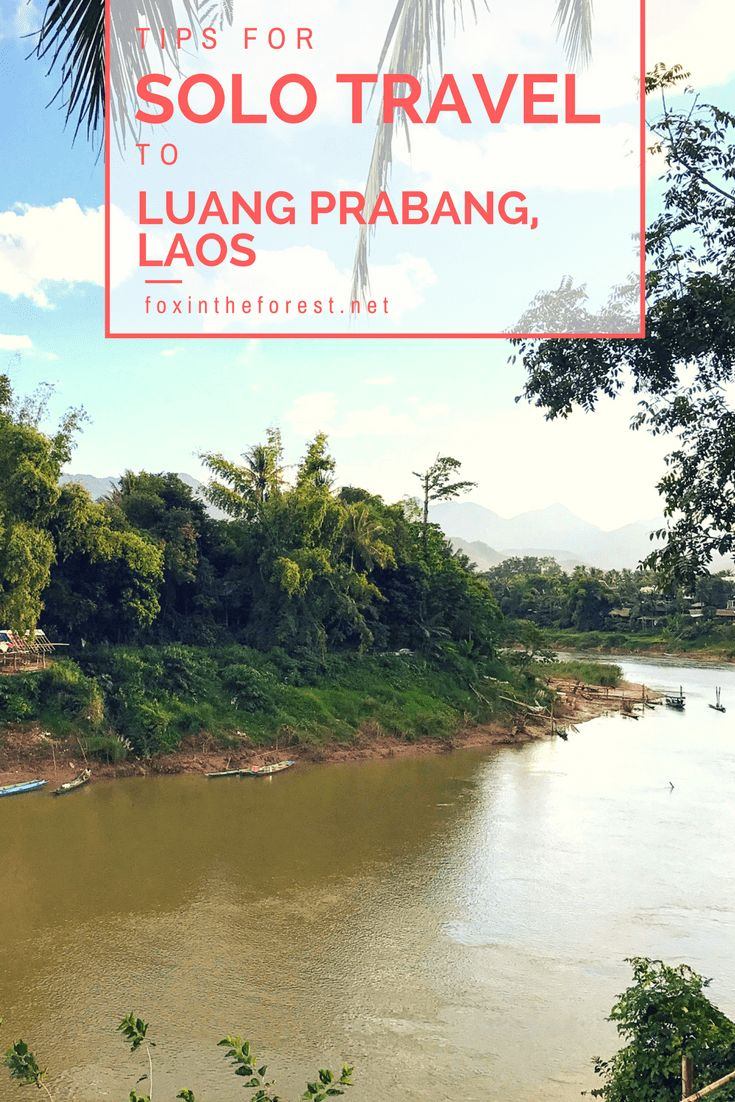 Looking for your next solo adventure? See why Luang Prabang, Laos is the perfect solo travel destination. Whether you seek adventure, culture, or cuisine, there's something for everyone in Luang Prabang. Solo travel destination | Female solo travel destination | Travel to Laos