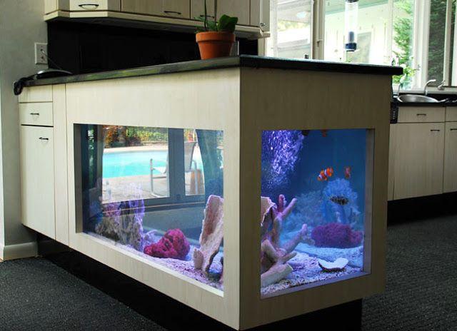 Kitchen Cabinet Aquarium  AQUARIUMS  Pinterest