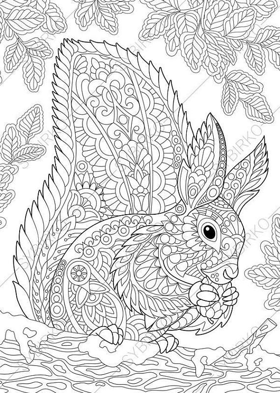 Coloring Pages For Adults Squirrel Forest Woodland Wildlife Animals Colouring Page Book Instant Download Print