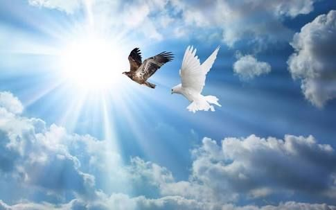 Image result for spiritual pictures of eagles and doves