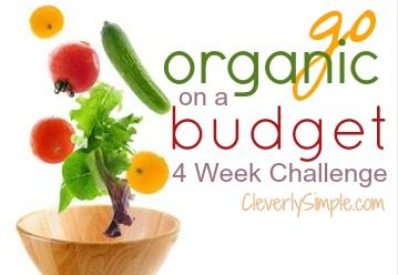 I'm going organic on a budget for 4 weeks!   :: Grocery Price Match Day 1
