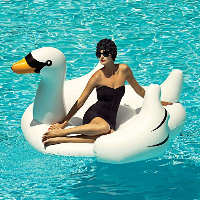 Inflatable Swan Float. Must. Get. NOW!!