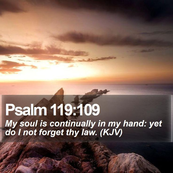 Psalm 119:109   My soul is continually in my hand: yet do I not forget thy law. (KJV)   #Sunset #Happy #WiseQuote #GodsChristianWarriors   http://www.bible-sms.com/