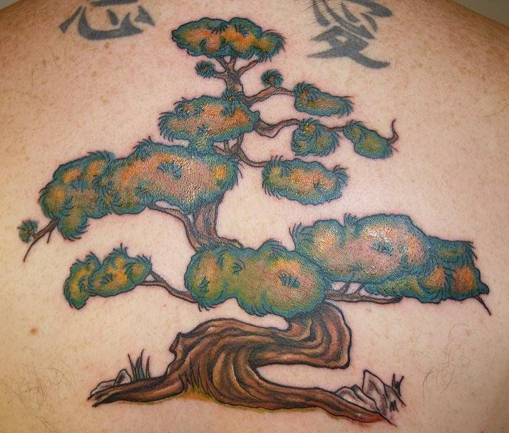 25 best ideas about bonsai tattoo on pinterest bonsai tree tattoos bonsai and watercolor trees. Black Bedroom Furniture Sets. Home Design Ideas