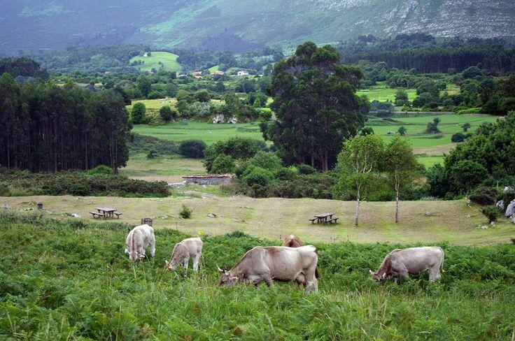 https://flic.kr/p/Kf3bvU | Ribadesella. Asturias