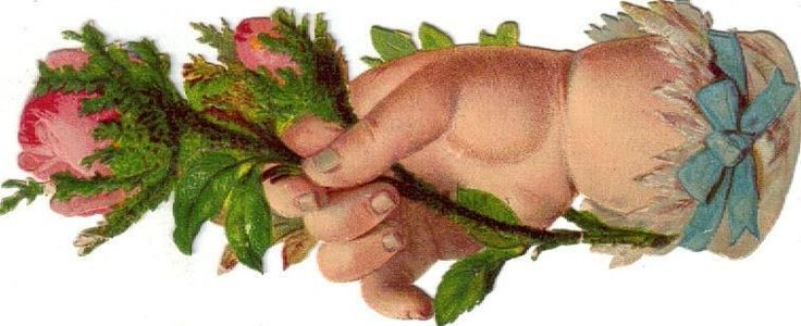 Larger Victorian Die Cut Scrap Chubby Baby Hand Roses c1880s