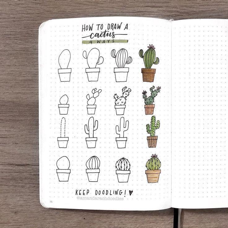 4 Möglichkeiten, einen Kaktus zu zeichnen! Ich hoffe, das hilft dir dabei, alles durchzuhalten. ✨ Comm