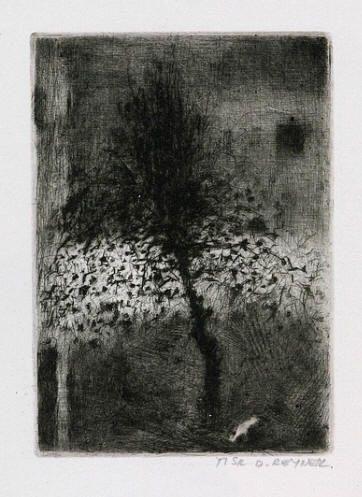 Bohuslav Reynek Jabloň suchá jehla / dry point 13 x 9 cm, 1957 otisk z původní desky, opus G420