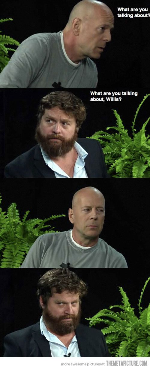 haha!Bruce Willis, Laugh, Funny Cat Photos, Funny Animal Pictures, Zach Galifianakis, Funny Stories, Between Two Ferns, Funny Girls, Funny Photos