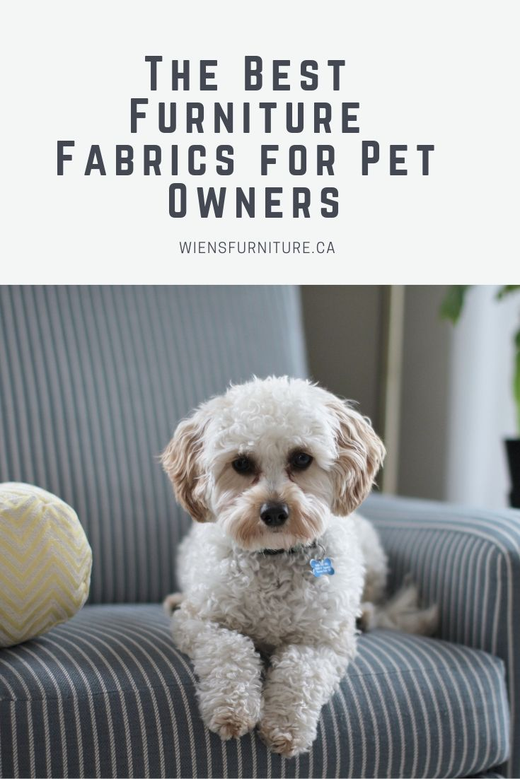 The Best Furniture Fabrics For Pet Owners Wiens Furniture And