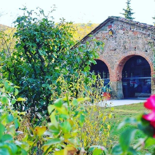 Magic #spring!   #villacampestri #oliveoilresort #experience #mugello #tuscany  #igtravel #Ig_Italy #igersitalia #instaitalia