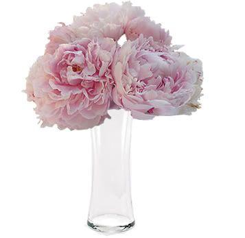 Pink peonies: Sarah Richardson, Clear Bridal, Bridal Shower, Pink Peonies, Flower Types