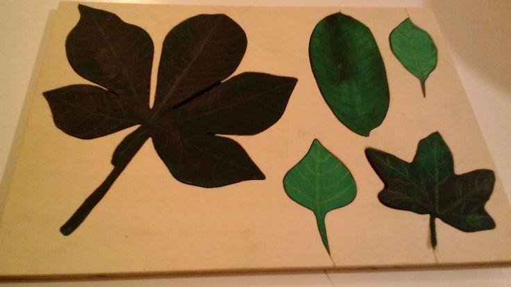 Montessori Leaf Puzzle/ Blätter Puzzle