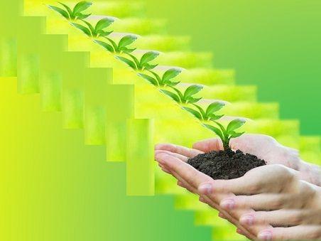 NEWS* AMBIENTE: PROTEGGERE LE FORESTE NELL'UE E NEL RESTO DEL MONDO Una nuova strategia per gestire le foreste nell'UE proteggerà l'ambiente creando al tempo stesso nuovi posti di lavoro nelle aree rurali. WWW.ORIZZONTENERGIA.IT #Ambiente, #SostenibilitaAmbientale, #Sostenibilità, #CambiamentiClimatici, #Ecosistema, #Ecodiversita, #Clima