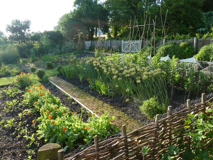 172 best kitchen gardens images on pinterest vegetable for Kitchen garden fence