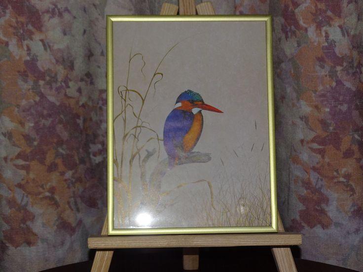 Obraz Zimorodek malachitowy Galeria domowa-Darobike