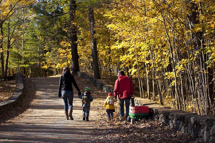 Le parc de la Gatineau est l'endroit tout indiqué pour marcher dans la nature. Plus de 165kilomètres de sentiers sont à la disposition des rand...