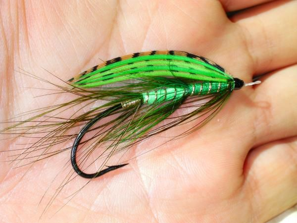 788 best steelhead fly patterns images on pinterest fly for Tying a fishing lure