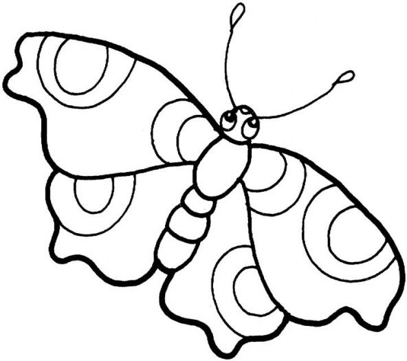 Butterfly Images For Drawing butterflies drawings
