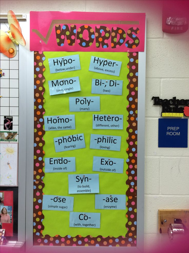Root word wall! Next year this will be a new goal of mine.