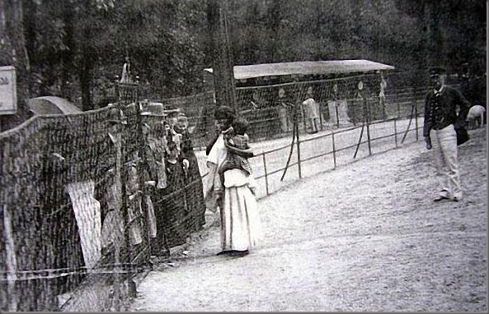 Οι «ζωολογικοί κήποι» της Ευρώπης όπου εξέθεταν Αφρικανούς ιθαγενείς. Τους επισκέπτονταν εκατομμύρια θεατές και τους τάιζαν μπανάνες...