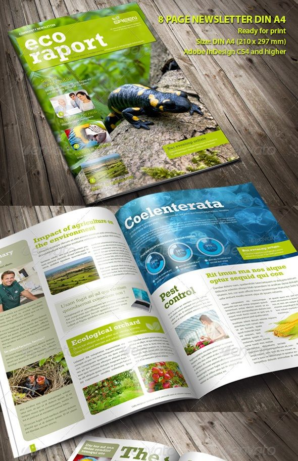 best newsletter design for print - Publication Design Ideas
