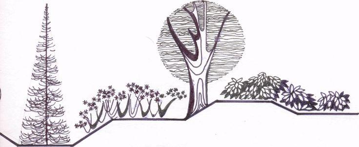 Графическая работа №2 «Изображение растительных форм» Цель задания