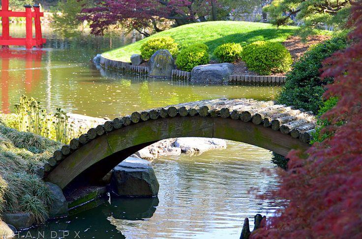 Handpx Brooklyn Botanical Garden Cherry Blossom Sakura Matsuri Festival Brooklyn New York
