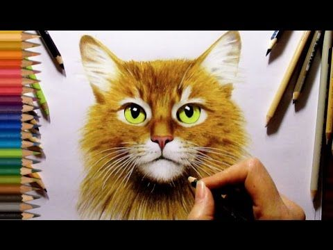 designer fashion rings Paint Cat Eyes in Colored Pencil with Mark Menendez  YouTube