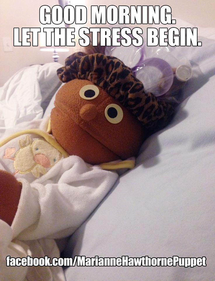 Image result for i hate stress meme