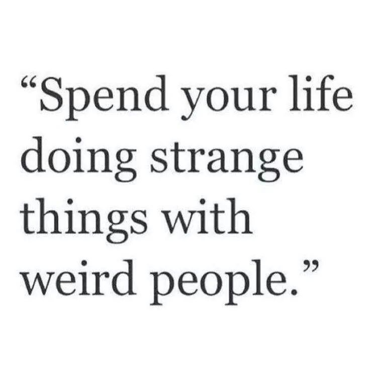 People Are Strange Quotes: 58 Best Images About Crazy & Weird Quotes On Pinterest