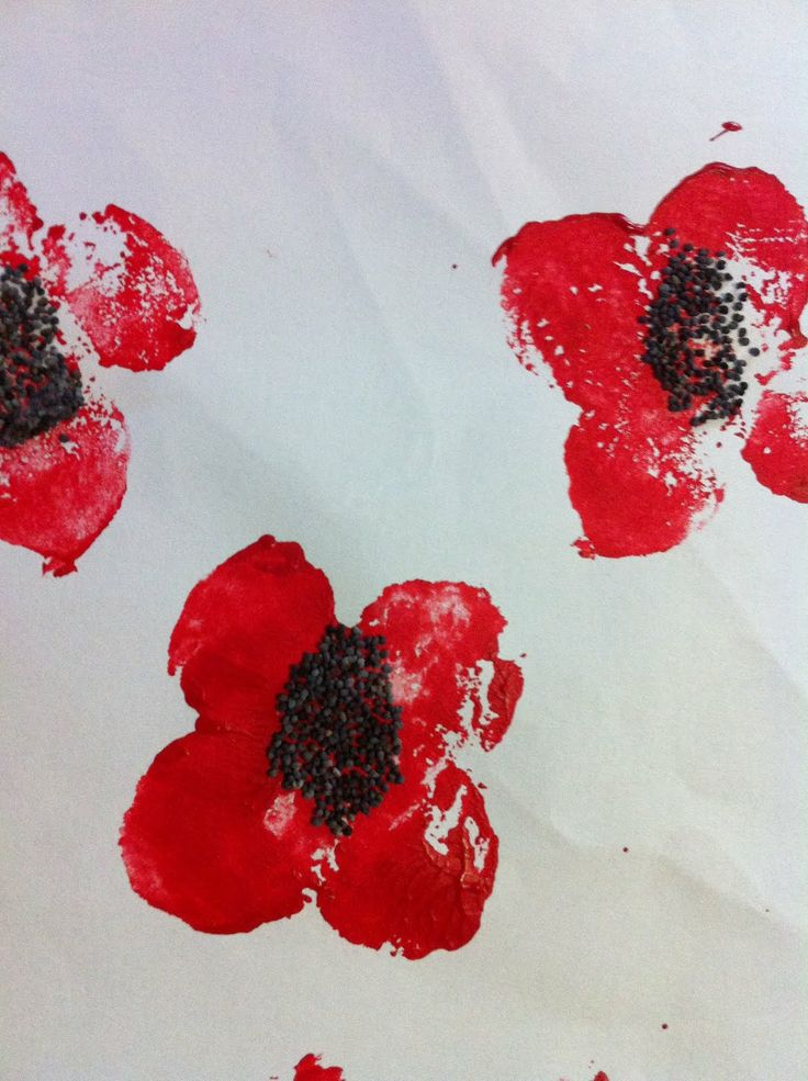 The Learning Curve: An Anzac Poem